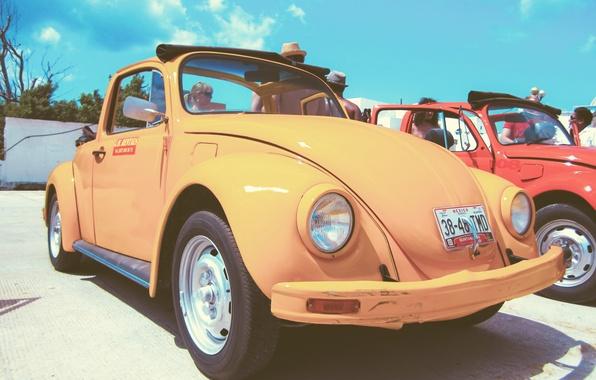 Picture beetle, volkswagen, vintage, yellow, beetle, car. vw