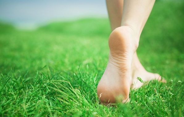 Picture greens, grass, girl, nature, background, Wallpaper, feet, mood, wallpaper, widescreen, background, full screen, HD wallpapers, …