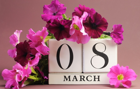 Picture flowers, March 8, date, congratulations, Petunia, women's day