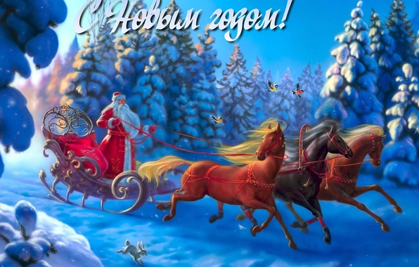 Picture winter, forest, snow, birds, holiday, tree, horse, Santa Claus, Bunny, three