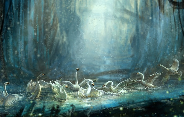 Picture forest, water, squirt, birds, pond, bathing, art, swans, Jiang Zhi