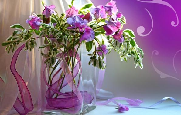 Picture bouquet, petals, vase, still life