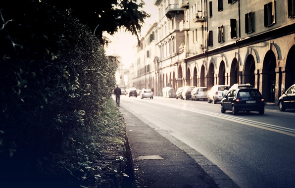 Picture road, the city, background, Wallpaper, street, pictures, home, plants, the sidewalk, cars, wallpapers, shrubs