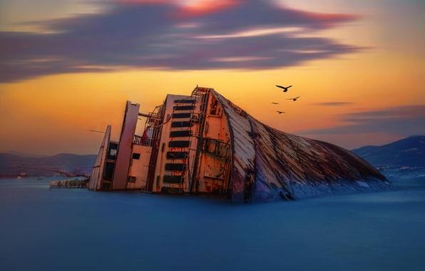 Picture sea, dawn, shore, ship, stranded, shipwreck