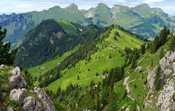 Picture forest, summer, mountains, house, Switzerland, Switzerland, Guest-free