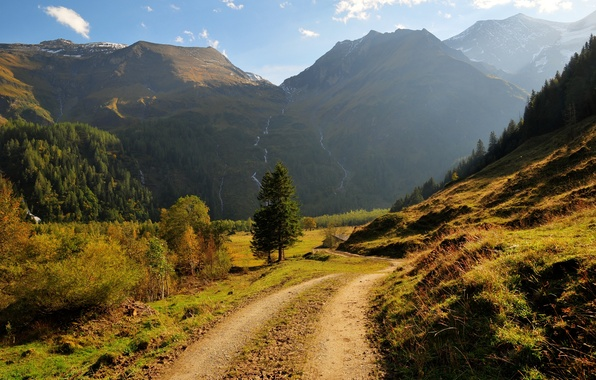 Picture road, forest, grass, trees, mountains, waterfalls