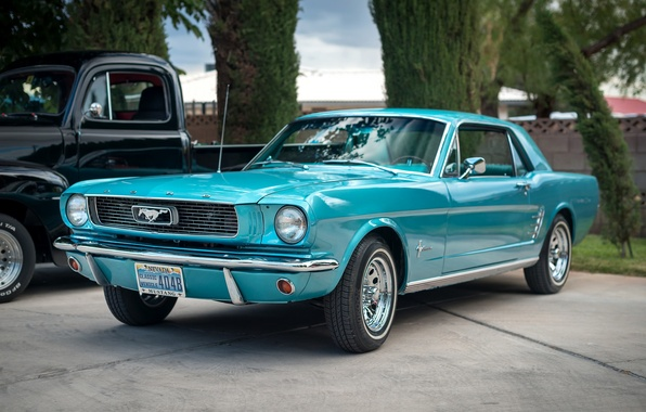 Picture Mustang, Ford, classic, the front