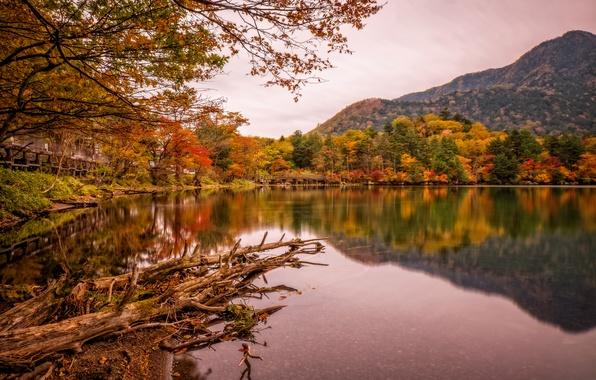 Picture autumn, trees, mountains, bridge, lake, Park, Japan, Nikko