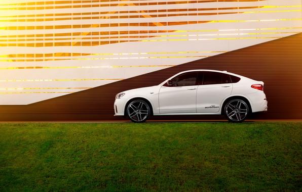 Picture BMW, BMW, AC Schnitzer, ACS, 2015