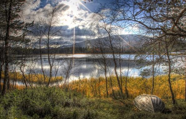 Picture autumn, the sun, trees, landscape, lake, boat