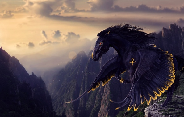 Picture look, rendering, wings, mane, black horse