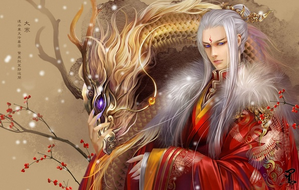 Picture berries, dragon, branch, tattoo, art, characters, guy, white hair, feimo