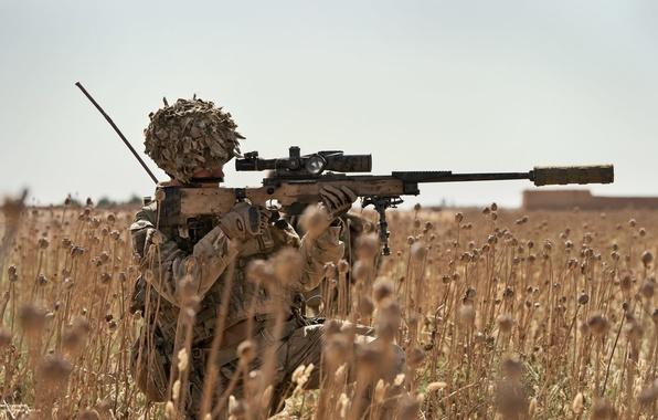 Picture field, optics, sniper, rifle, equipment, sniper