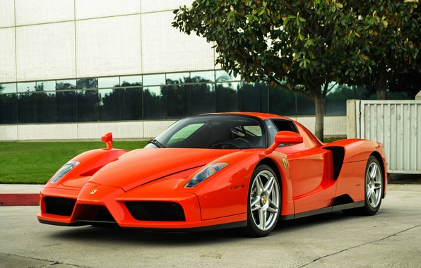 Picture red, tree, the building, Windows, red, ferrari, Ferrari, front view, enzo, Enzo