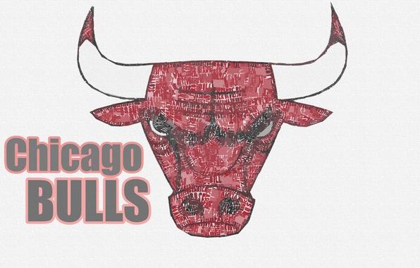 Picture Basketball, Background, Logo, NBA, Chicago Bulls, Bulls