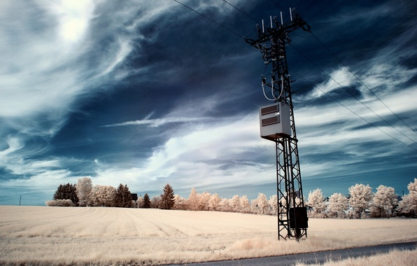 Picture field, the sky, trees, wire, post