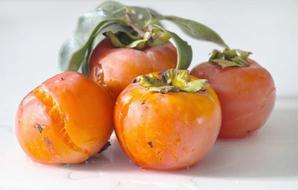 Picture fruit, fruit, orange, ripe, Wren