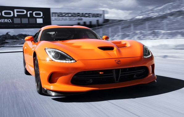 Picture machine, speed, Dodge, Viper, the front, SRT