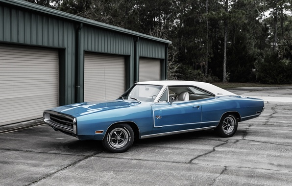 Picture Dodge, Dodge, Charger, 1970, the charger
