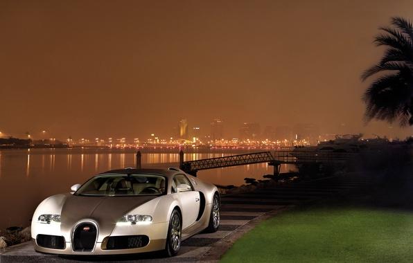 Picture auto, night, the city, river, lawn, Wallpaper, veyron, bugatti