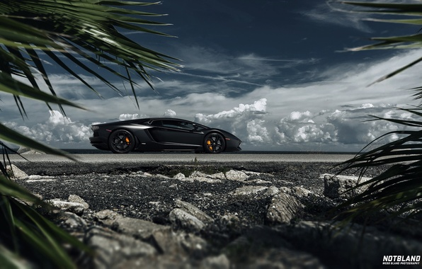 Picture machine, auto, the sky, leaves, clouds, Lamborghini, auto, Aventador, notbland, Webb Bland