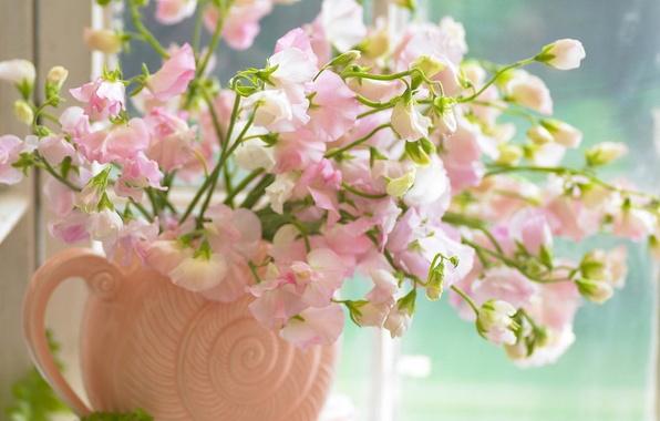 Picture flowers, pink, bouquet, window, vase