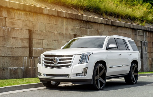 Picture Cadillac, Escalade, Front, White, Road, 2015, Rides