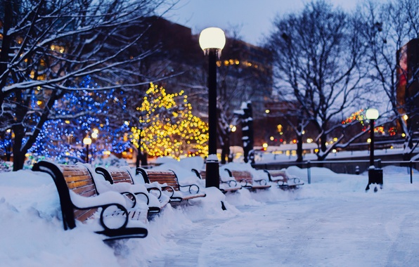 Picture winter, light, snow, trees, the city, lights, the evening, lights, garland, benches, holidays, benches, bokeh, …