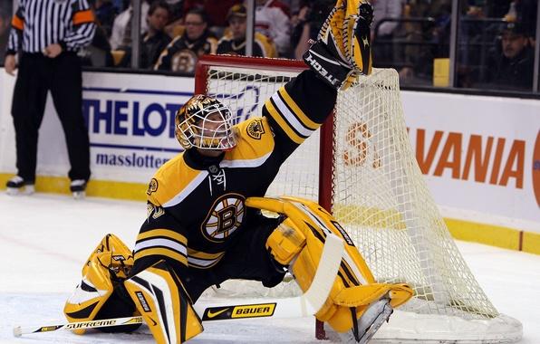 Picture jump, hockey, NHL, bruins, hockey, boston, tim, tomas, nhl, goalkeeper, save