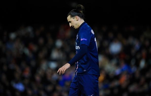 Picture Football, Sweden, Football, Player, Player, PSG, PSG, Paris Saint-Germain, A very loyal player, Zlatan Ibrahimovic, …