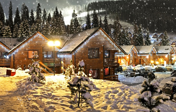 Picture winter, forest, snow, trees, snowflakes, night, lights, holiday, new year, lights, houses, garland