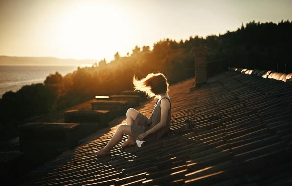 Picture roof, girl, the wind, SKAT, Delirium