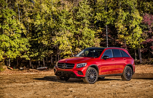 Picture Mercedes-Benz, Mercedes, AMG, AMG, X253, GLC-Class