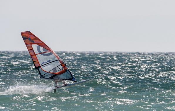 Picture sea, sport, Windsurfer