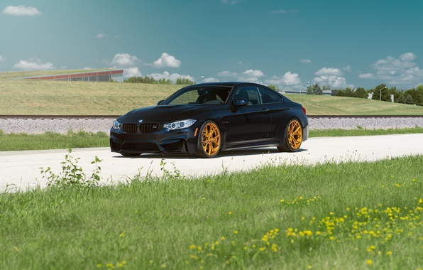 Picture BMW, Car, Grass, Front, Black, Day, Summer, Azurite