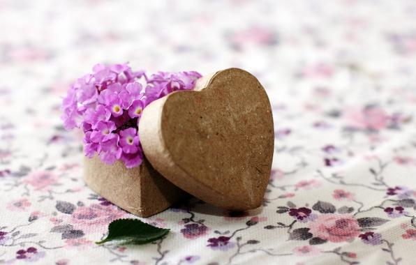Picture purple, flowers, background, Wallpaper, mood, heart, leaf, wooden, form, leaf, flowers, heart, widescreen, box, full …