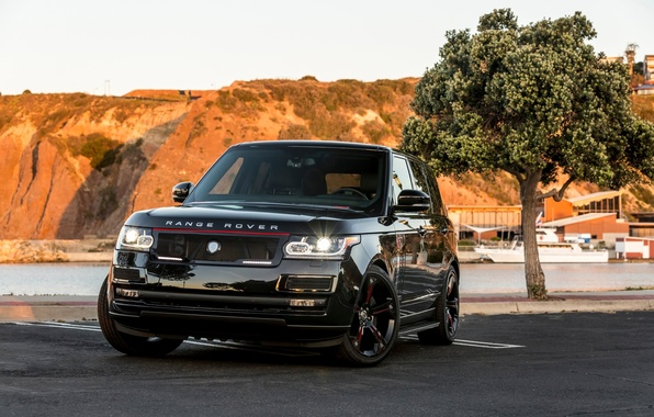 Picture SUV, Range Rover, tuning, STRUT