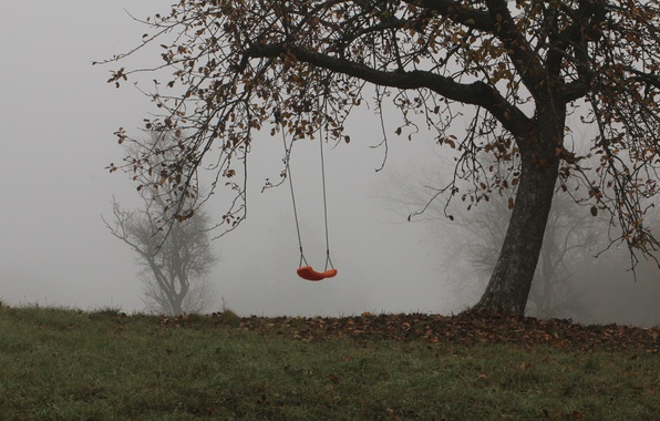 Picture trees, fog, swing, Autumn, trees, autumn, fog, swing, mist