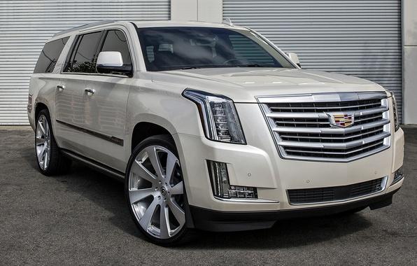 Picture Cadillac, Escalade, Cadillac, Escalade, SUV jeep