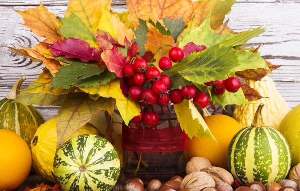 Picture autumn, leaves, berries, harvest, pumpkin, nuts, autumn, leaves, nuts, still life, fruits, pumpkin, harvest