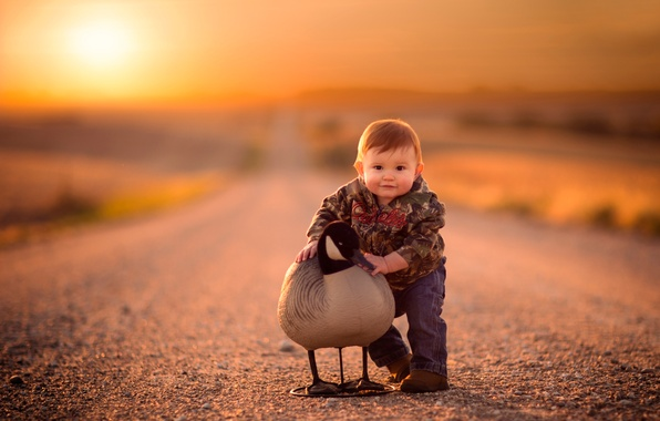 Picture road, bird, boy, child, bokeh