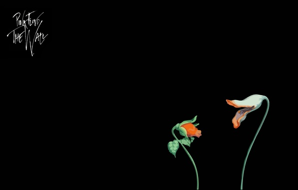 Picture music, minimalism, Pink Floyd, movie, The Wall, Elclon, the flowers, Empty Spaces