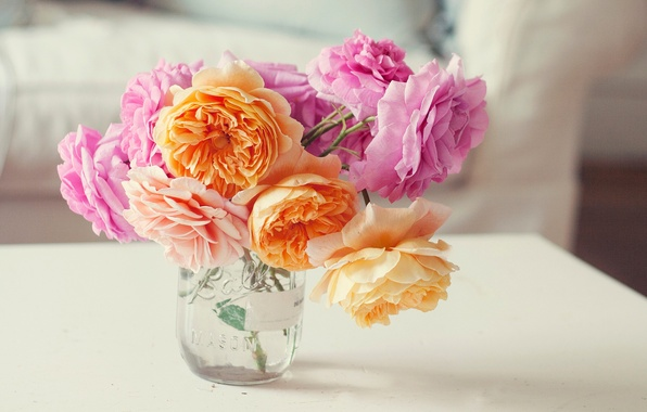 Picture flowers, roses, bouquet, petals, Bank, pink, orange