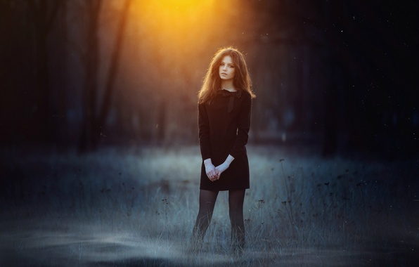 Picture forest, grass, look, sunset, sexy, pose, sweetheart, hair, Girl, figure, dress, brunette, girl, brown hair, …