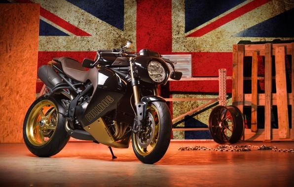Picture Black, Moto, Triumph, Vilner, Bulldog, Speed Triple