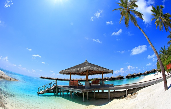 Picture sand, sea, the sky, the sun, nature, palm trees, stay, vacation, the Maldives, Bungalow