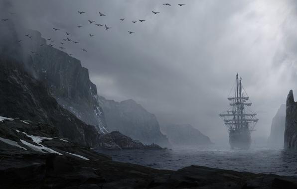 Picture sea, water, landscape, mountains, birds, fog, rocks, shore, ship