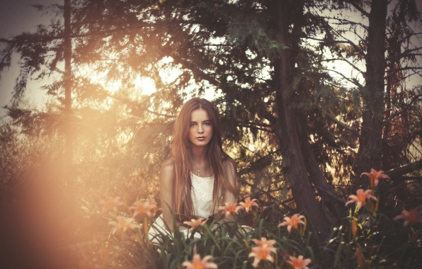 Picture girl, light, flowers