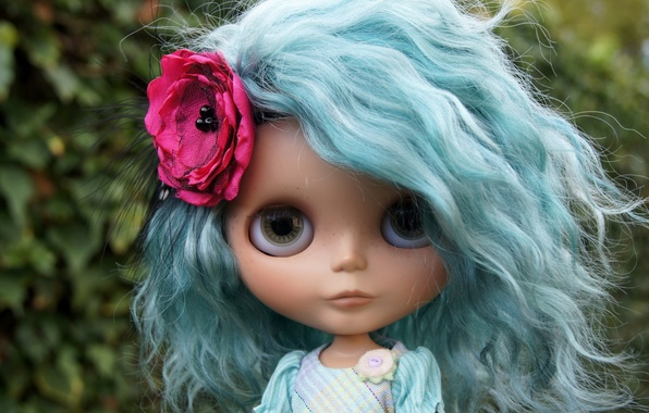 Picture flower, hair, toy, doll