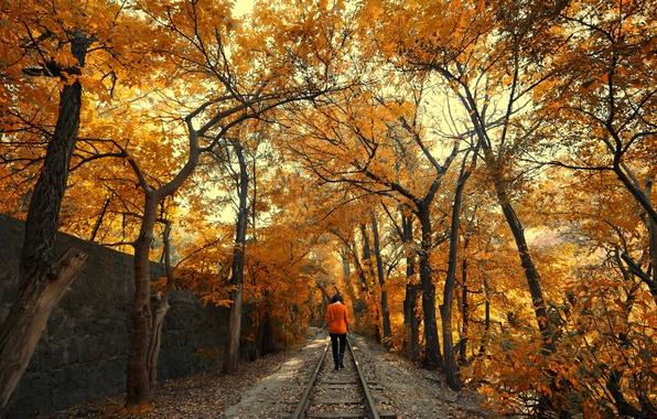 Picture road, autumn, leaves, girl, trees, nature, foliage, rails, brunette, the crimson